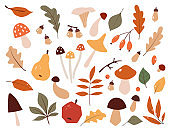 Autumn set, hand drawn elements. Botanical leaves, flowers, berries,mushrooms, trees.Seasonal banner. September fall. October party. November sale.