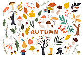 Set of colorful autumn leaves in cartoon style. Seasonal banner. September fall. October party. November sale. Doodle floral elements. Hand drawn vector botany set. Bright background for harvest time
