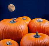 Halloween Fall Pumpkins at night in the moonlight