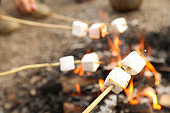 Frying marshmallow on bonfire outdoors. Camping season