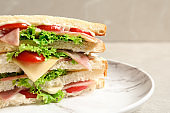Tasty toast sandwich on plate, closeup. Wheat bread