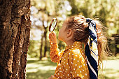 Rear view image of cute little girl exploring the nature with magnifying glass outdoor. Child playing in the forest with magnifying glass. Curious kid looking through magnifier to the tree in the park