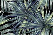 Trendy Fun Abstract Pattern