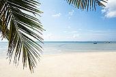 Palm Leaves Turtle Bay, Mahe Island, Seychelles