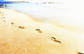 Footprints of a lone walker beside the sea on the sand at an idyllic beach
