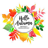 Vector watercolor autumn leaves collection in brught color