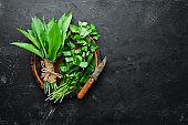 Fresh wild garlic leaves on black background. Wild leek. Top view. Free space for your text.