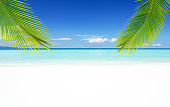 Summer white sandy beach with palm leaves copy space scene