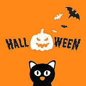 Happy Halloween text postcard banner with scary face on pumpkin, bats, witch cat and text happy halloween isolated on white background flat style design.