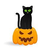 Cute black with cat sitting on halloween pumpkin with scary face flat style design vector illustration isolated on white background