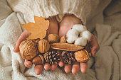 A woman holds in her hands a beautiful fall assortment. Cotton, bump, nut and acorn