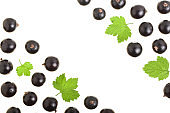 black currant isolated on white background with copy space for your text. Top view. Flat lay pattern