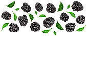 Fresh blackberry with leaves isolated on white background with copy space for your text. Top view. Flat lay pattern