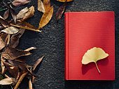 Red book and autumn maple leaves, Ginkgo leaves, fallen leaves