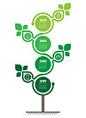 Vertical Timeline infographics. Sustainable development and growth of the eco business. Time line of scientific research with 4 options. Concept of Green Business with leafs and four parts, steps or points.