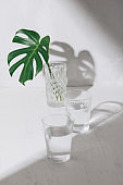 Leaf in a glass of water on a white table