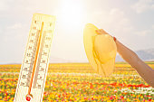 thermometer in the sky, the heat. woman's hand holding straw hat, summer concept