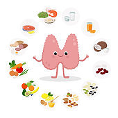 Thyroid Cartoon character vector illustration, Healthy Food for the thyroid health - set of icons in flat design isolated on white background. Medical Infographic elements