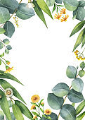 Watercolor vector card with green eucalyptus leaves and meadow plants.