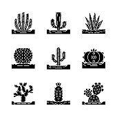 Wild cactuses on ground glyph icons set