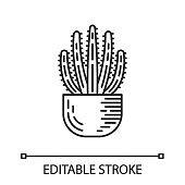 Organ pipe cactus in pot linear icon