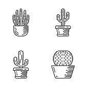 House cacti in pot linear icons set