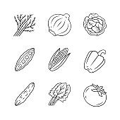 Vegetables linear icons set