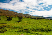 The typical landscape in Yorkshire Dales National Park, Great Britain.