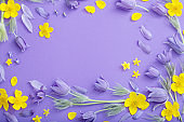 purple and yellow spring  flowers on violet paper background