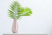 vase with palm leaves on white background