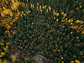 autumn landscape aerial view. Finland near Hiidenvesi lake