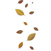 Colorful autumn leaves decorated with white blank paper for your message. Can be used as a poster or greeting card design.