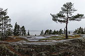 Scenic view with lake rainy morning in Natural park reserve Nummela, Finland