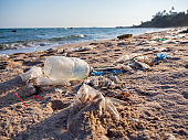 Garbage on the beach. Spilled garbage on the beach of the big city. Empty used dirty plastic bottles. Dirty sea sandy shore the Black Sea. Environmental pollution. Ecological problem.