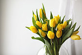 A bouquet of yellow tulips in a vase on the windowsill. A gift to a woman's day from yellow tulip flowers. Beautiful yellow flowers in a vase by window.