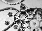 Close Up Watch Mechanism