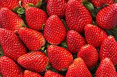 Background of freshly harvested strawberries