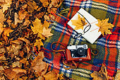 Checkered red and yellow plaid with fringe and autumn leaves, a book, glasses, and a camera