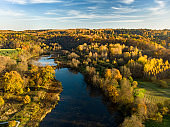 Aerial colorful forest scene in autumn with orange and yellow foliage.