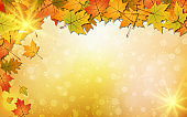 Autumn style vector background with colorful leaves