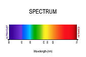 spectrum. visible light, infrared, and ultraviolet.
