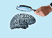 Man With Magnifying Glass Looks Closely At A Brain