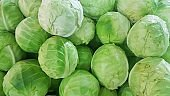 fresh cabbage sold in the market, Vegetable natural background