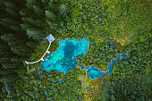 lake of Zelenci surrounded by reeds and trees. Aerial drone shot.