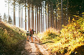 Mother and son with their family member beagle dog walking by the trekking path with backpacks under the evening sun light.