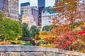 Central Park, New York City Autumn