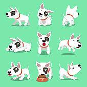 Vector cartoon character cute bull terrier dog poses