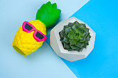 squishy pineapple toy and succulent in concrete pot on a blue background
