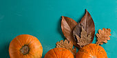 autumn web site banner with pumpkins