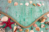 sea shells collection on a vintage shabby wooden background